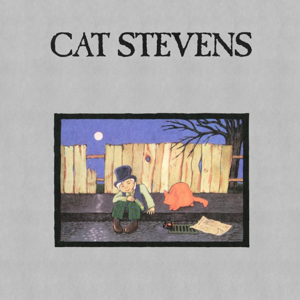 cats-6