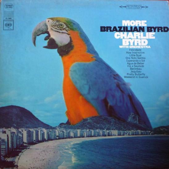 bird110