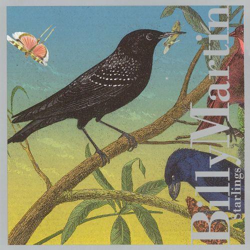bird135