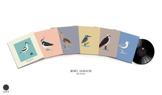 bird39
