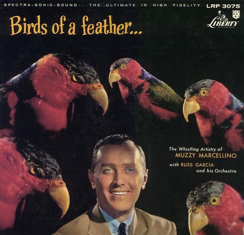 birds-3