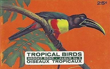 brooke-bond-empty-album-canada-tropical-birds