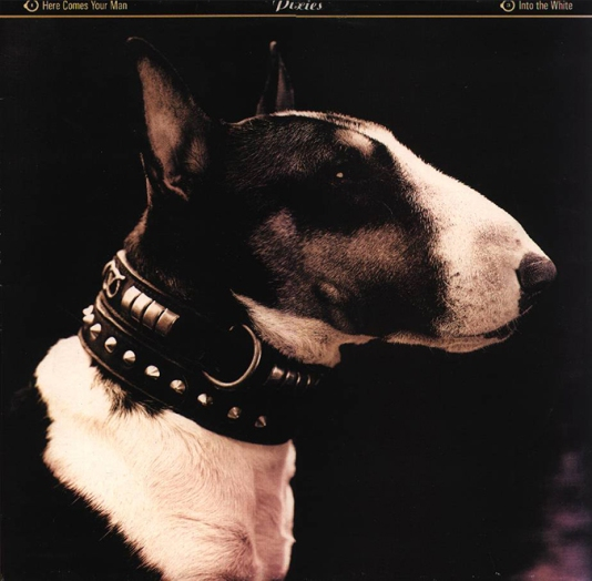 dogs-album-covers-pixies-here-comes-your-man