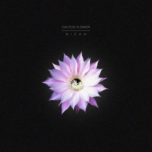 flower 54