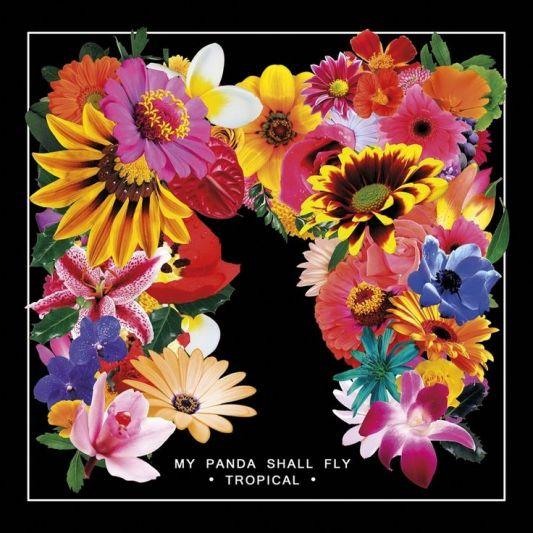 flowers 71