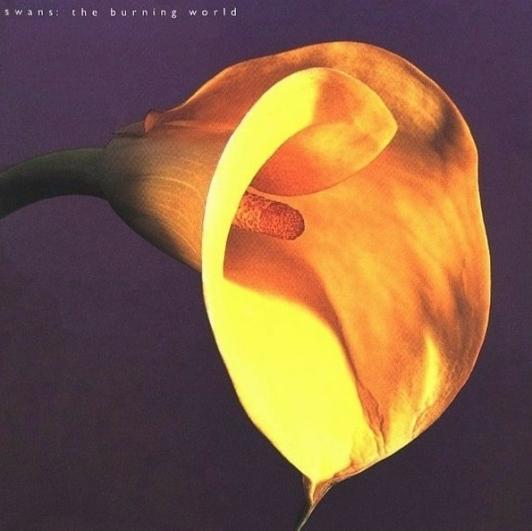 swans-the-burning-world-lp
