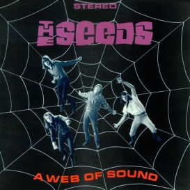 the-seeds-a-web-of-sound-4903502