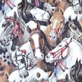 Posse_horse blanket