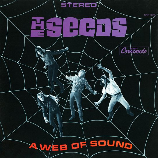 seeds-a-web-of-sound