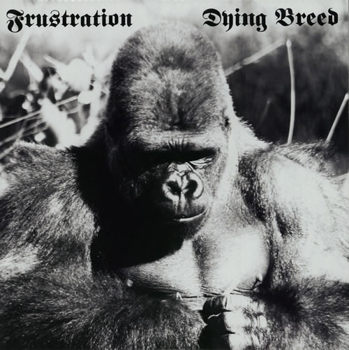 FRUSTRATION_DYING+BREED+-+WHITE+VINYL-586391